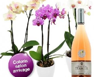 livraison orchidée domicile mariage