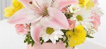 faire livrer des fleurs pour une naissance